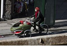 custom recumbent converted bicycles sidecar - Google Search
