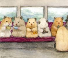 Cute Guinea Pigs, Cute Hamsters, Funny Animal Videos, Funny Animals, Cute Animals, Cute Sketches, Art Drawings Sketches, Baby Animals Pictures, Funny Animal Pictures