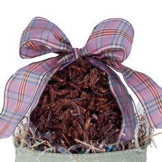 Burdick Chocolate: Rocher Egg