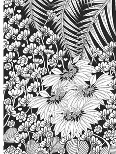 Amazon.com: Creative Haven Midnight Garden Coloring Book: Heart & Flower Designs on a Dramatic Black Background (Creative Haven Coloring Books) (9780486803180): Lindsey Boylan: Books