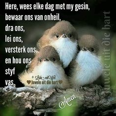 Protection Prayer For My Children, Evening Greetings, Afrikaanse Quotes, Goeie More, Spiritual Life, Good Morning Quotes, True Words, Positive Thoughts, Christianity