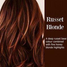 more auburn hair blonde highlights Red To Blonde, Brown Blonde, Blonde Color, Reddish Brown, Redish Brown Hair, Dark Red Hair With Brown, Red Brown Hair Color, Medium Blonde, Brunette Color