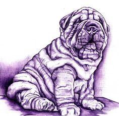 MODELOS CON LA TÉCNICA DEL BOLÍGRAFO Shar Pei Fever, Art Drawings Sketches, Dog Art, Disney Art, Puppies, Creative, Dogs, Sugar, Animals