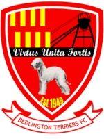 Bedlington Terriers FC