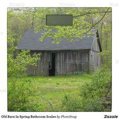 Old Barn In Spring Bathroom Scales Bathroom Scale