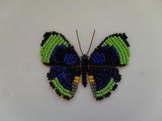 Бабочки - 3