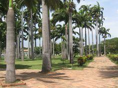 Parque Grancolombiano - #Cúcuta #soloprivilegios te invita a: https://www.facebook.com/hotelcasinointernacionalcucuta