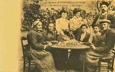 Blog de angor :Phot-image, Carte postale ancienne  -  866 -  Safran - ( Epice )- Récolte - Epluchage