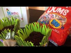 Magic of Spring - Dum Dum Lollipop Garden