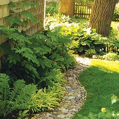 Hints on how to use rocks in landscaping