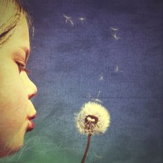 creatively me: iphoneography tips