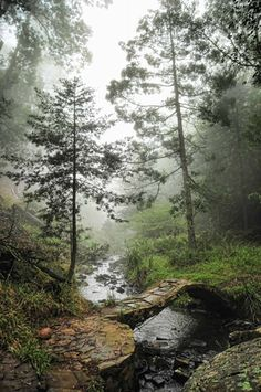 Middle Earth Hogsback - The place where time stood still
