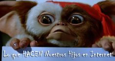 An original Gizmo puppet face made for the production of Gremlins The New Batch (Warner Bros. Gremlins Gizmo, Les Gremlins, Foreign Movies, 80s Movies, Cute Fantasy Creatures, Cute Creatures, Horror Icons, Horror Films, Girl Bye