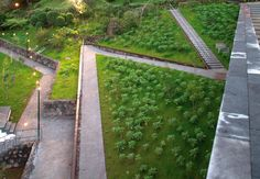 08-Volcano-Park-Global-Landscape-Architecture-photo-Leonardo-Finotti « Landscape Architecture Works | Landezine