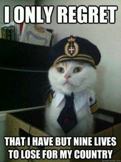 I only regret - Lol cat patriot Image