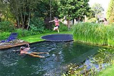 Fun swimming pool, disguised as a pond, Using a trampoline instead of a diving board would be so much fun !!