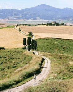 "Qui è dove è stata girata la scena del film ""il gladiatore"". ISPANICO ISPANICO! * * #tuscany #toscana #igerstoscana #siena #igerssiena #road #ilgladiatore #agameoftones #hotshotz_ #allshots_ #global_hotshotz #jaw_dropping_shots #ig_masterpiece #worldcaptures #awesome_earthpix #moodygrams #vzcomood #artofvisuals #discoverglobe #ourplanetdaily #folkgood #superhubs #bestnatureshot"
