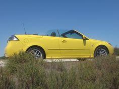 yellow sa