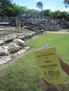 A guide to the Mayan Ruins of San Gervasio on the island of Cozumel, Mexico. Vacation Club, Vacation Resorts, Western Caribbean, Cozumel Mexico, Mayan Ruins, Disney Cruise, Wonderful Places, Traveling Tips, San
