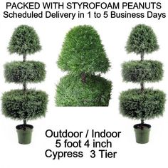 SPJPLANTS Two Artificial Outdoor Indoor Potted 5 foot 4 inch Designer 3 Tier Cypress Topiary Tree Plants SPJPLANTS http://www.amazon.com/dp/B0040HL1UC/ref=cm_sw_r_pi_dp_.j5cub14MWESE