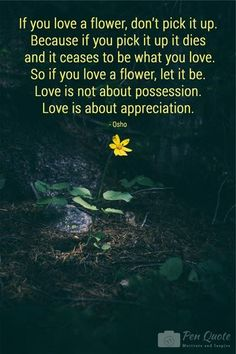 If you love a flower dont pick it up. Because if you pick it up it dies and it ceases to be what you love. So if you love a flower let it be. Love is not about possession. Love is about appreciation.  Pen Quote