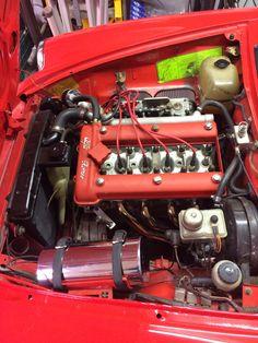 Alfa Bertone, Alfa Romeo Junior, Alfa Romeo Spider, All Cars, Spiders, Exotic Cars, Cars And Motorcycles, Antique Cars, Freedom
