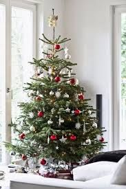 Christmas decorations 11 Tips For Decorating Your Holiday Tree Like a Pro Christmas Tree Design, Christmas Tree Themes, Holiday Tree, Glass Christmas Ornaments, White Christmas, Christmas Diy, Holiday Decor, Xmas Tree Decorations, Old Fashioned Christmas