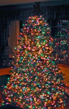 Tip::Looks like the top light string has gone out on this gorgeous tree. Easiest fix is to add a new string. Don't worry about the burnt-out set until After you take the tree down.