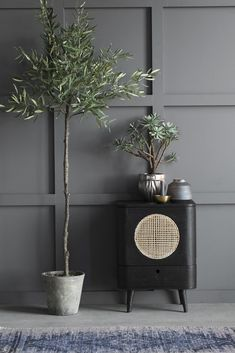 Deluxe Artificial Flora Olive Tree In Rustic Pot. This high quality faux olive tree looks simply stunning against the grey wall panelling. For similar wall colour try Farrow & Ball Downpipe or Railings. Living Room Grey, Home Living Room, Boudoir Bleu, Interior Plants, Interior Design, Faux Olive Tree, Console Design, Bibliotheque Design, Design Interiors