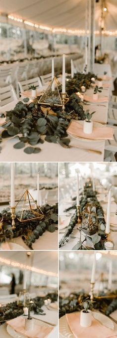 Geometric shapes + succulents | Image by Vic Bonvicini Photography