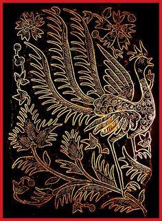 Suryo Peacock