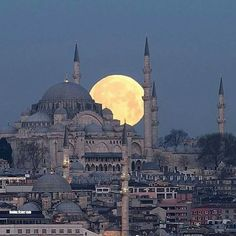 Suleymaniye Mosque in Istanbul Turkey Cool Pictures, Cool Photos, Beautiful Pictures, Temples, Places To Travel, Places To Go, Voyage New York, Destinations, Turkey Photos