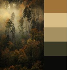 Color palette-SvetlanaDem