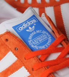 Orange Gazelles