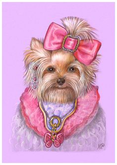 Yorkshire Terrier the Pink Yorkie