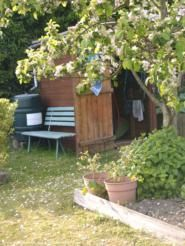 russ's shed, my allotment