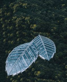 Amazing glass house in the middle of the forest 📍 Located in Nanjing, China 📸 Photos by @seven7panda and @cocoanext . . . . . . . . . . . .…