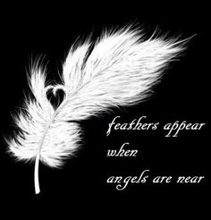 And a feather has appeared. November I am thankful for guardian angels and the loved ones they have protected. Have you ever had an angel experience? 4 Tattoo, Tattoo Feather, Tattoo Quotes, White Feather Tattoos, Pray Tattoo, Feather Tattoo Meaning, Tattoo Music, Lace Tattoo, I Believe In Angels
