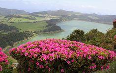 Lagoa das Furnas. Sao Miguel. Açores, Azores, Portugal