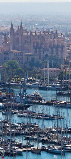 La catedral y el puerto Seu, Palma de Mallorca, España
