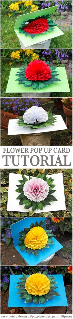 Flower Pop Up Card Tutorial by Peter Dahmen. Link also includes a lot of other creative pop up ideas! Flower Crafts, Diy Flowers, Paper Flowers, Flower Diy, Fun Crafts, Diy And Crafts, Paper Crafts, Card Crafts, Creative Crafts