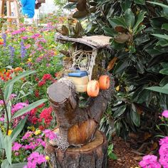 Tinkerbell\'s Miniature Fairy Garden Houses at Disney\'s Epcot Park ...