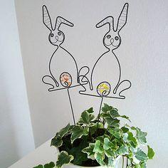 zajko v kvetináči