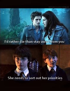 Hahahaha I wish that Harry Potter fans and Twilight fans could just get along! I mean really. Why can't I like both?!