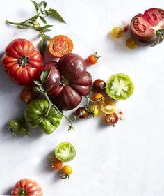 20 Recipes for Fresh Summer Tomatoes | Now's the time to relish plump, just-off-the-vine tomatoes.