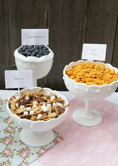 Teddy Bear Picnic Party- idea for snacks (blueberries, trail mix and gummy bears)