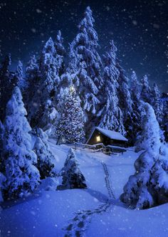 My house will look like this when winter gets here! Yes, even the long hike up to the house!