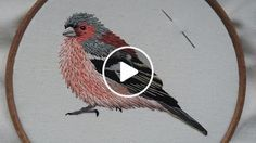 https://www.craftjitsu.com This video shows how to hand embroider a chaffinch, the skills can be used for any bird or for that matter any kind of embroidery. The first video on how to transfer the design can be seen here https://youtu.be/4B-8bi3fDI4 I