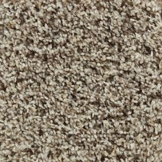 $2.54 sq ft  STAINMASTER Active Family Carefree Andover Frieze Indoor Carpet at Lowes.com