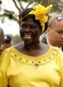 Wangari Muta Maathai (Ihithe, Distrito de Nyeri, 1º de abril de 1940 - Nairóbi, 25 de Setembro de 2011)  professora e ativista política do meio-ambiente queniana. Foi a primeira mulher africana a receber, em 2004, o Prêmio Nobel da Paz.  Wangari Maathai ficou conhecida no mundo pela sua luta de conservação das florestas e do meio ambiente. Na década de 1970, ela fundou o movimento do Cinturão Verde Pan-africano, no Quênia, uma iniciativa que plantou 30 milhões de árvores.